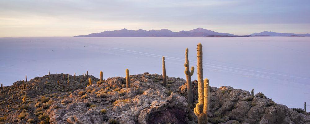 Bolivian Salt Plains